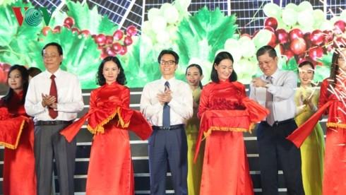 Eröffnung des Festes der Trauben und Wein in Ninh Thuan 2019 - ảnh 1