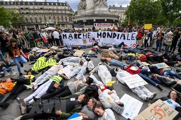 Proteste gegen Monsanto in Frankreich - ảnh 1