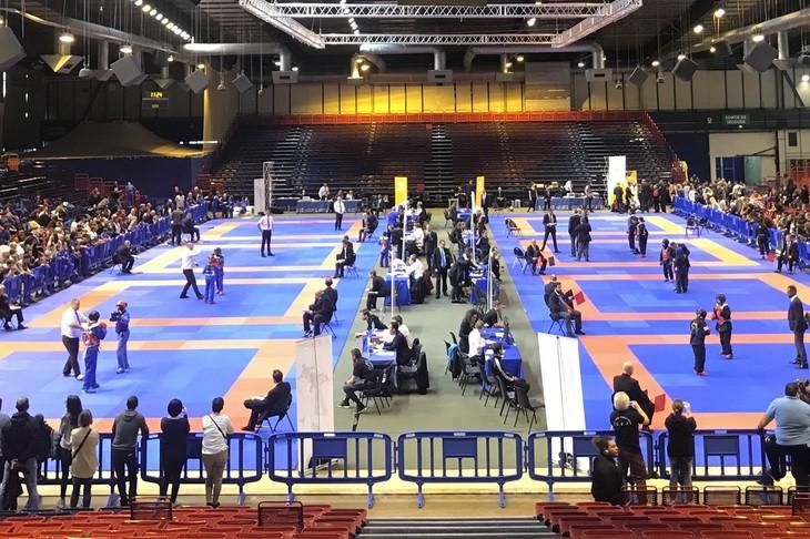 Wettkämpfe in vietnamesischem Kung Fu in Frankreich - ảnh 1