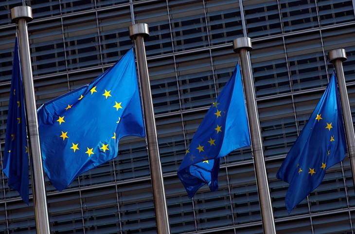 Europawahl 2019: Europäische Volks- und Sozialparteien lehnen mögliche Zusammenarbeit mit Rechtsparteien ab - ảnh 1