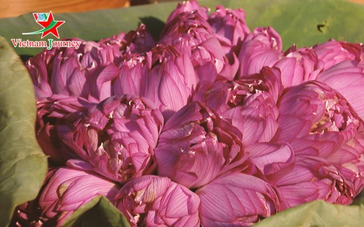 Die Schönheit der Lotusblumen im Sommer in Vietnam genießen - ảnh 1