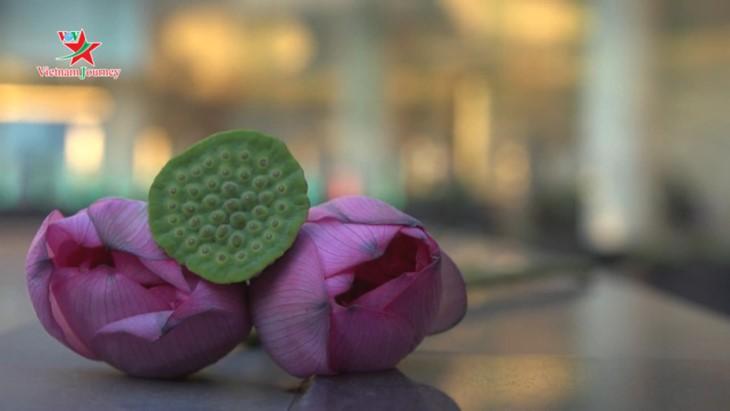 Die Schönheit der Lotusblumen im Sommer in Vietnam genießen - ảnh 5