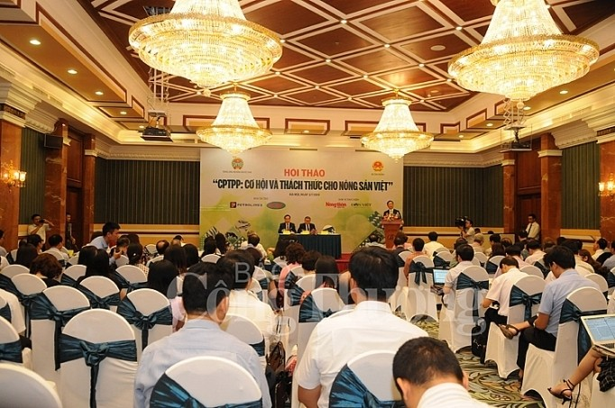 Vietnamesische Landwirtschaft nutzt Chancen von CPTPP aus - ảnh 1