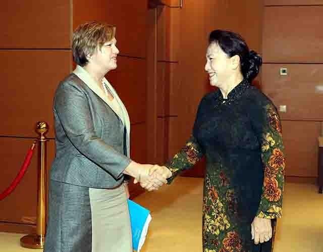 응우옌 티 김 응언 국회의장,주베트남 UNICEF 수석 대표 회견 - ảnh 1