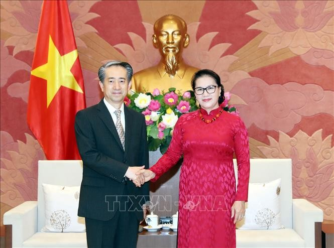 응우옌 티 낌 응언 국회의장, 중국대사 접견 - ảnh 1