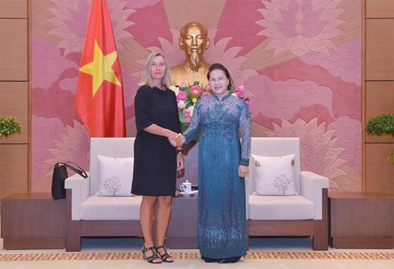 응우옌 티 낌 응언 국회의장, 페데리카 모게리니 EU부위원장 접견 - ảnh 1