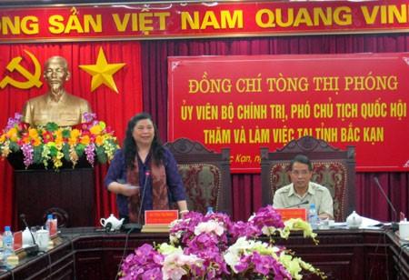 អនុប្រធានរដ្ឋសភា Tong Thi Phong បំពេញការងារនៅខេត្ត Bac Kan - ảnh 1