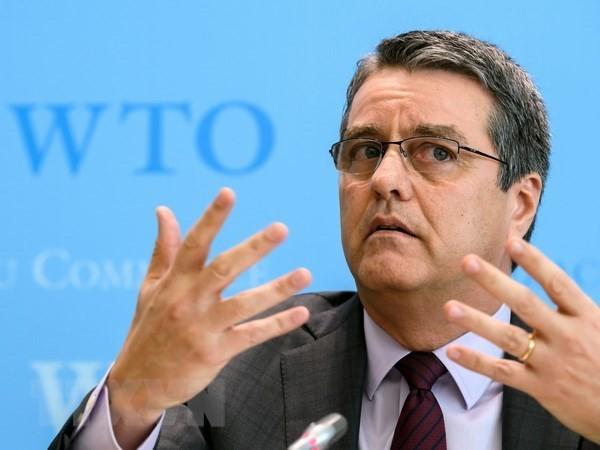 អគ្គនាយក WTO ៖ គ្មានសញ្ញាណាមួយដែលសឲ្យឃើញថា អាមេរិកចាក ចេញពីអង្គការនេះទេ - ảnh 1