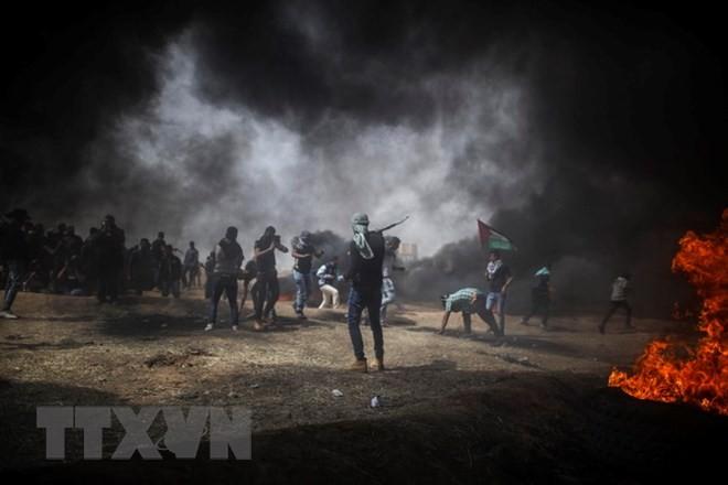 ភាពតានតឹងឡើងជណ្តើរនៅតំបន់ Gaza  - ảnh 1