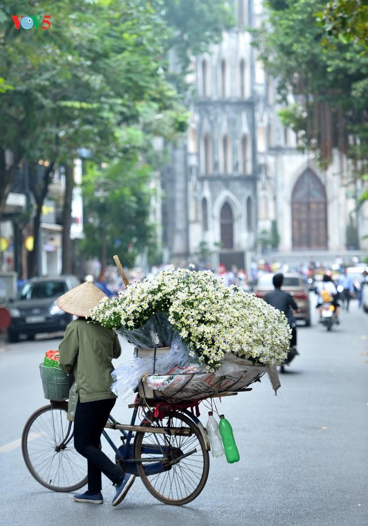 រដូវផ្កាគ្រីសាន (Chrysanthemum) Hoa mi (ហាកមី) រីកនៅទីក្រុងហាណូយ - ảnh 16