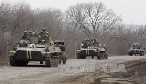 ភាគីមានជំលោះនានានៅអ៊ុយក្រែនទទួលបានកិច្ចព្រមព្រៀងឈប់បាញ់១នៅជាយទីក្រុង Donetsk - ảnh 1