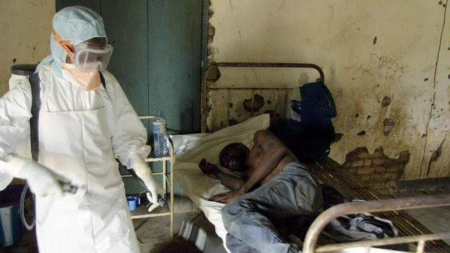 WHO ៖បរិមាណអ្នកជំងឺត្រូវស្លាប់ដោយវីរុស Ebola បានជាង១១ពាន់នាក់ - ảnh 1