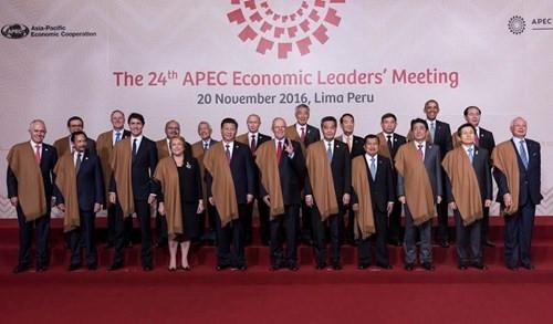 ប្រធានរដ្ឋលោក Tran Dai Quang បញ្ចប់ប្រកបដោយជោគជ័យសកម្មភាពភាពក្នុង ក្របខ័ណ្ឌសន្និសិទ APEC ២០១៦ - ảnh 1