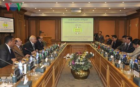 越南政府监察总署推动与埃及行政监察署的合作 - ảnh 1