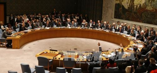 联合国安理会呼吁寻找也门和平路线图 - ảnh 1