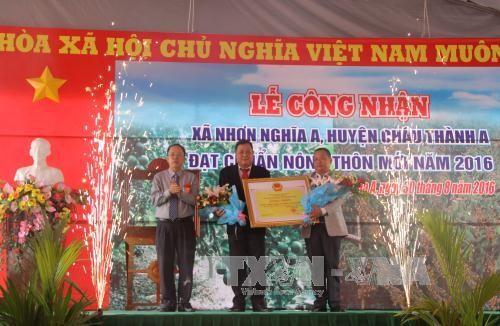 力争2020年越南全国50%以上的乡达到新农村标准 - ảnh 1