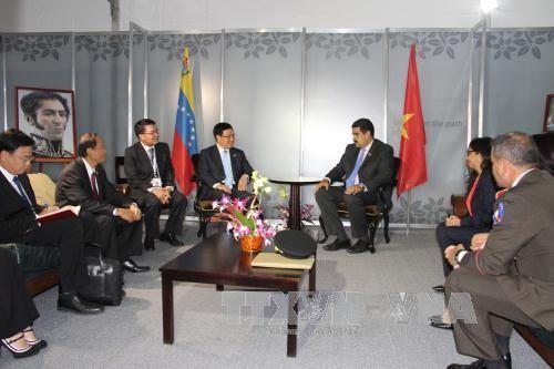 范平明会见委内瑞拉总统和伊拉克外长 - ảnh 1