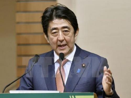 日本承诺采取措施加快经济发展和批准《跨太平洋伙伴关系协定》 - ảnh 1