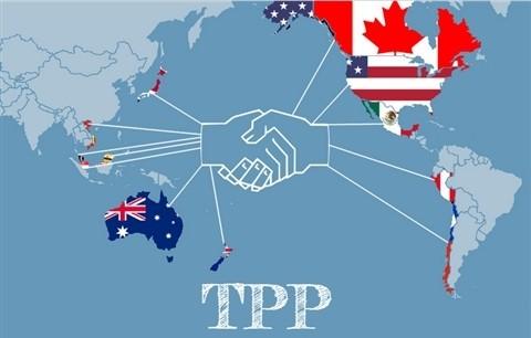 没有美国的《跨太平洋伙伴关系协定》 - ảnh 1
