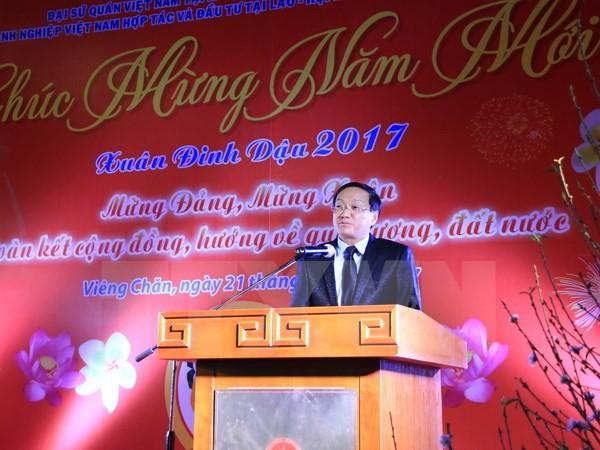 越南驻外代表机构举行拜年活动 - ảnh 1