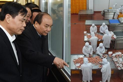 越南政府总理阮春福视察北宁一些生产设施 - ảnh 1
