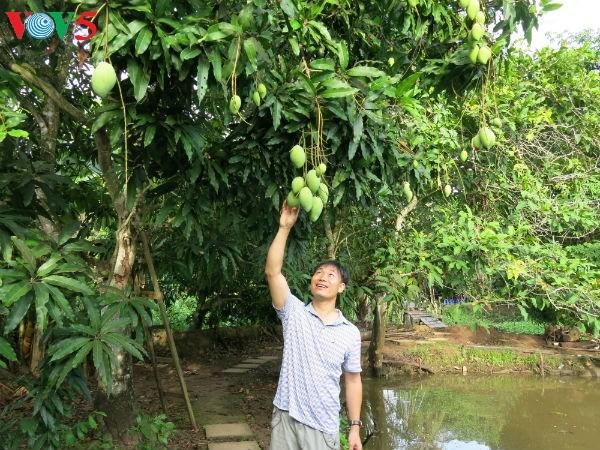 提高越南特产水果出口附加值 - ảnh 1