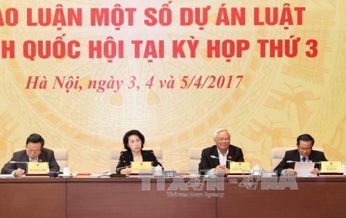 越南专职国会代表会议开幕 - ảnh 1