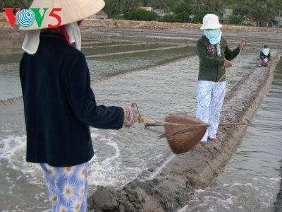 广义省沙黄盐村 - ảnh 1