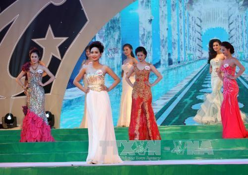 太原省举行2017年产茶区选美比赛 - ảnh 1