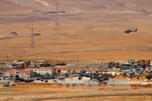叙利亚政府军在中部沙漠地区夺回2000平方米区域控制权 - ảnh 1
