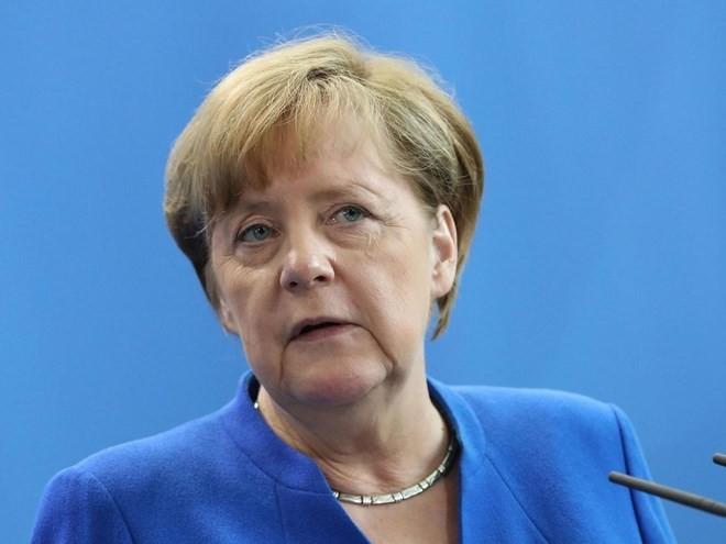 默克尔驳斥与德国选择党合作的可能性 - ảnh 1