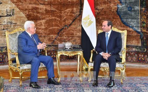 埃及和巴勒斯坦探讨中东和平进程解决方案 - ảnh 1