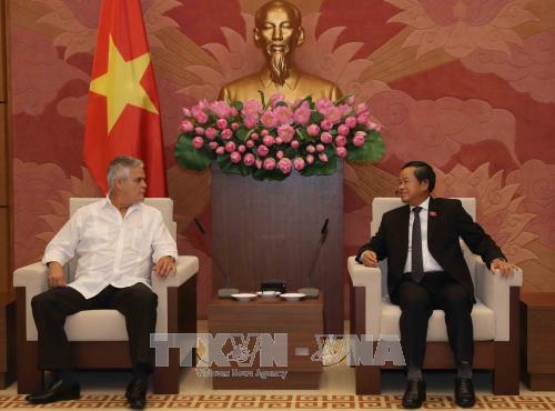 越南国会副主席杜伯巳会见古巴保卫革命委员会副主席亚内斯 - ảnh 1