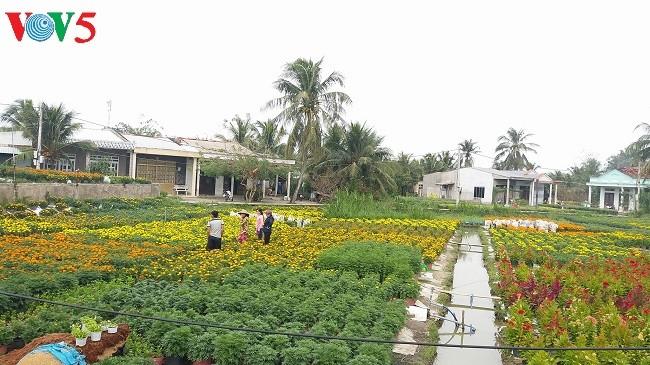 槟椥省实施新农村建设计划过程中的变化 - ảnh 1