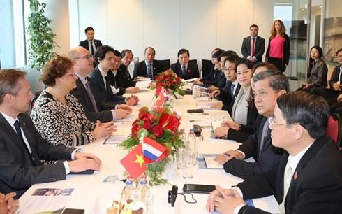 越南国会主席阮氏金银圆满结束对荷兰的正式访问 - ảnh 1
