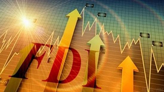 引进外国直接投资30年:回顾与前进 - ảnh 2
