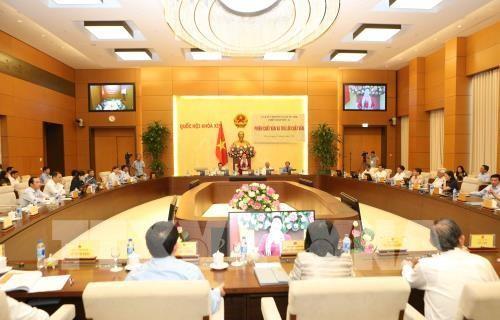 越南国会常委会质询公安部部长苏林 - ảnh 1