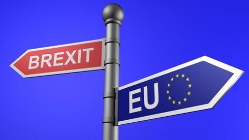 英国脱欧:若与欧盟无法达成协议  英国将准备单方面措施 - ảnh 1