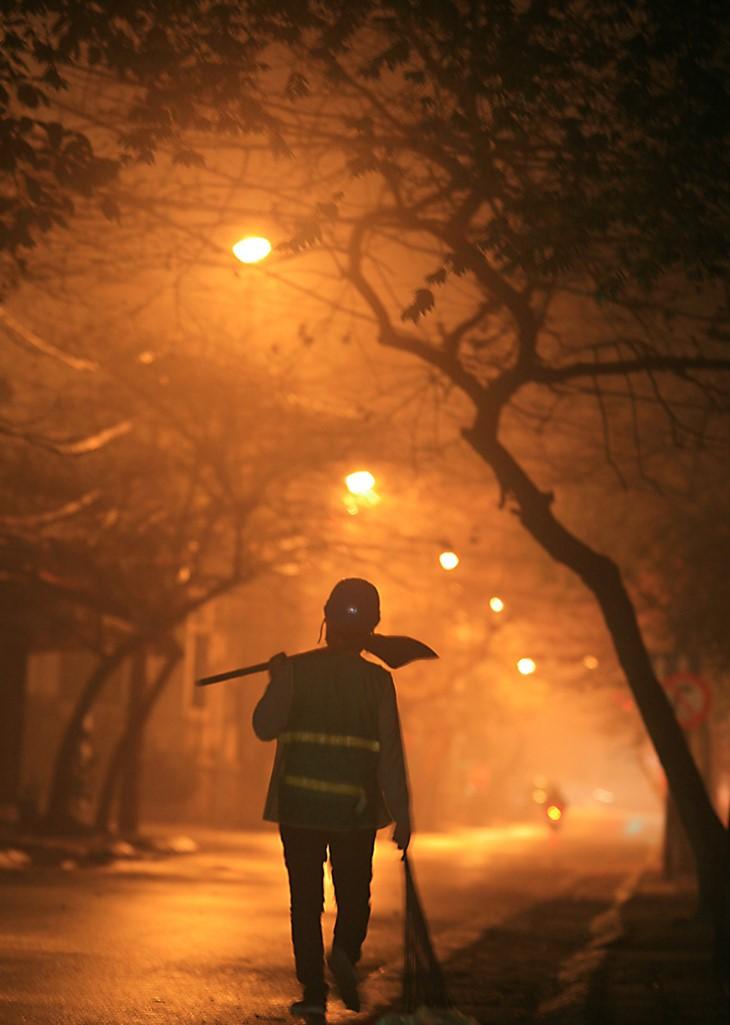 一睹越南妇女在劳动中的风采 - ảnh 8