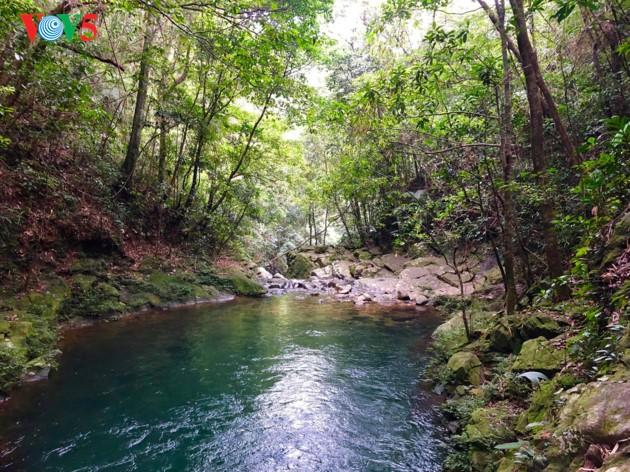 征服五湖和杜鹃瀑布的探险之旅 - ảnh 3