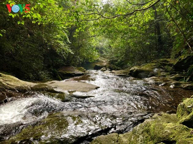 征服五湖和杜鹃瀑布的探险之旅 - ảnh 4