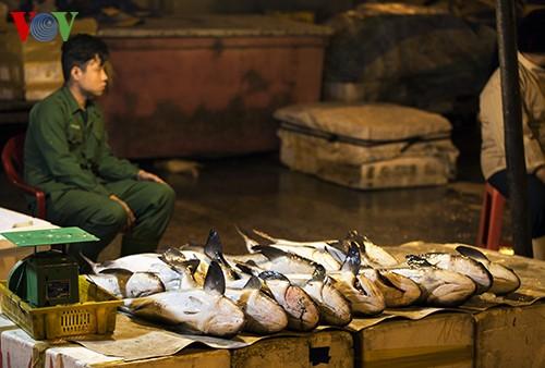 Tho Quang fishing port in spring  - ảnh 10