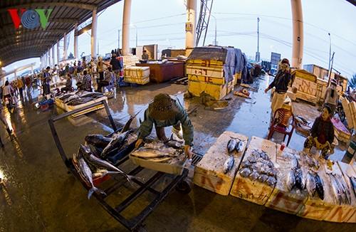 Tho Quang fishing port in spring  - ảnh 15