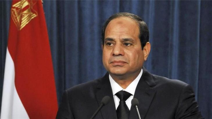Egypt reshuffles cabinet - ảnh 1