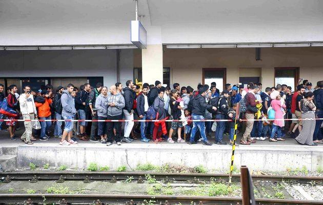 EU countries resolve migration crisis - ảnh 1