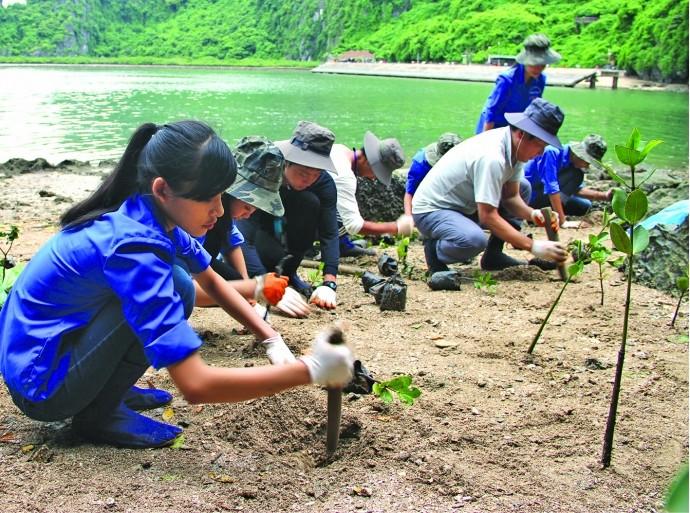 Vietnam, EU share experience on climate change response - ảnh 1