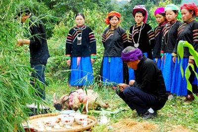 Pu Peo worship of the Forest Genie and forest protection - ảnh 1