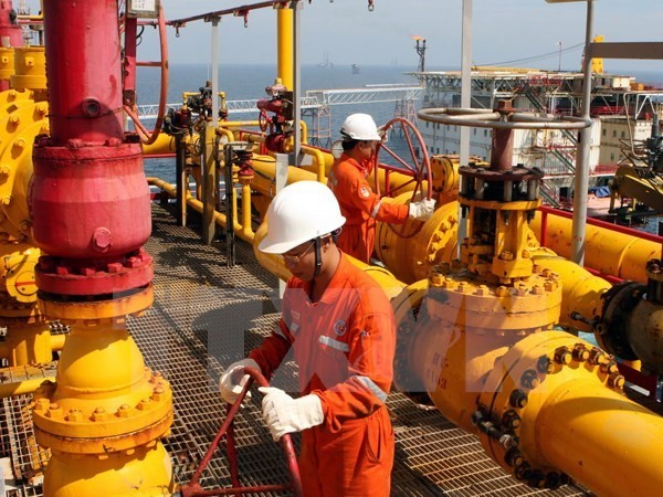 Gas collection and distribution system in Thai Binh inaugurated - ảnh 1