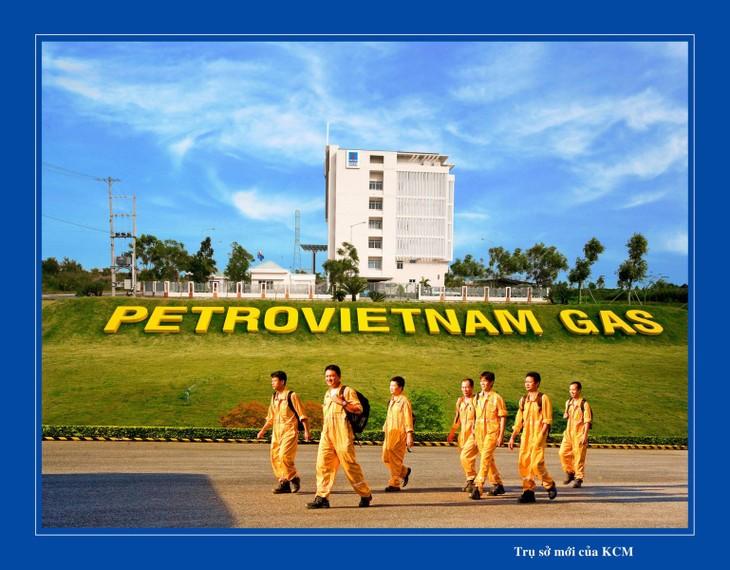 Developing Vietnam's petro-gas to international level - ảnh 1