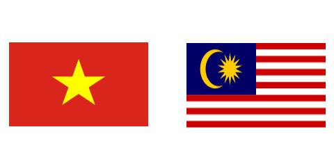 Vietnam, Malaysia hold strategic dialogue between senior officials - ảnh 1